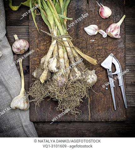 bunch of fresh young garlic tied with a rope on a brown wooden board, top view