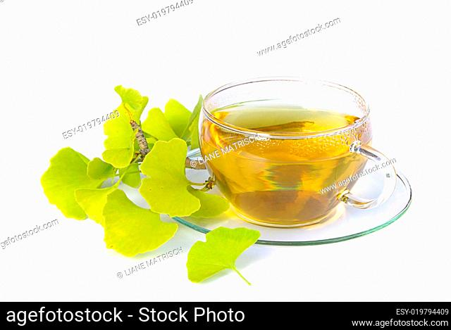 Tee Ginkgo - tea ginkgo 01