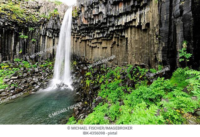 waterfall Svartifoss with basalt columns, Skaftafjell National Park, Iceland