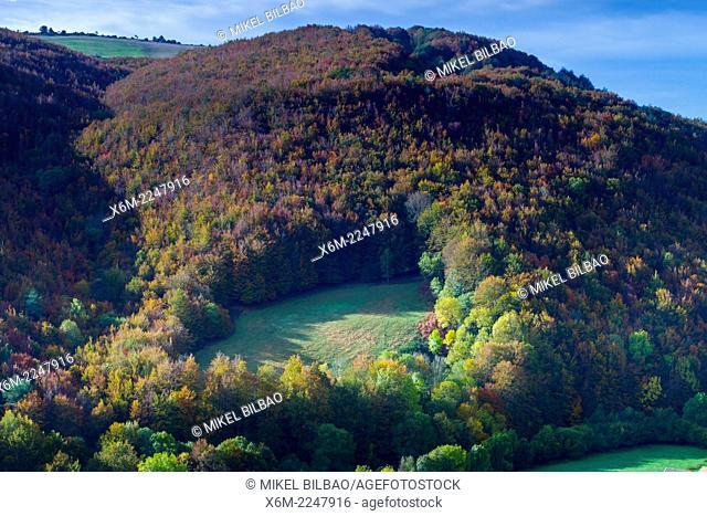 Irati Forest. Navarre, Spain. Europe