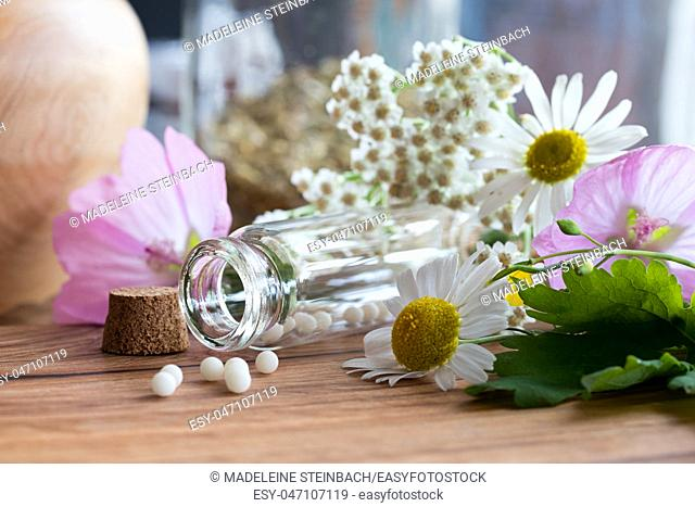 A bottle of homeopathic globules with chamomile, yarrow, greater celandine and other flowers in the background