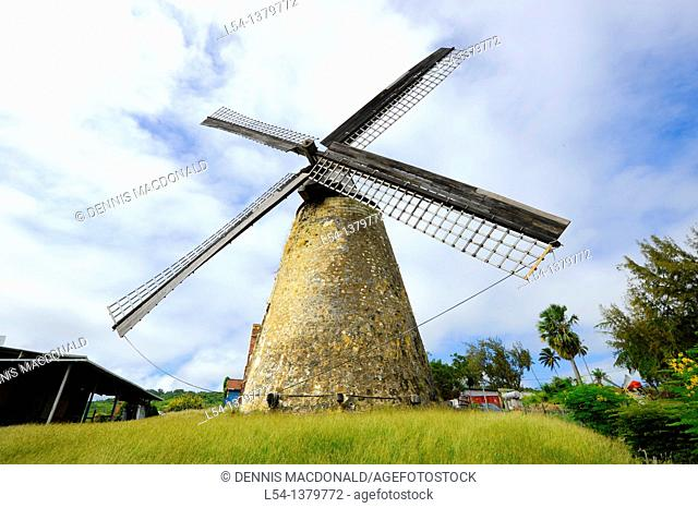 Morgan Lewis Sugar Mill Bridgetown Barbados Caribbean Cruise NCL