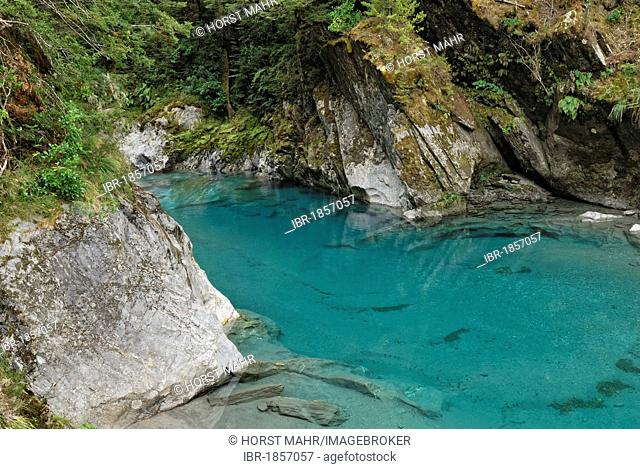 Blue Pools at Makarora, Highway 6, South Island, New Zealand