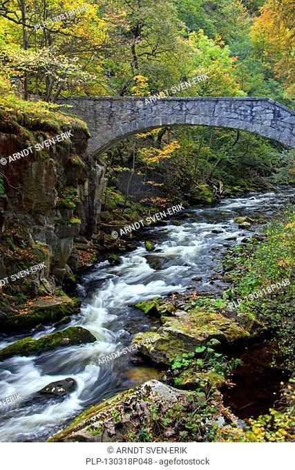 Jungfernbrücke / Virgins Bridge, Bode river, Bode valley, autumn, Saxony-Anghalt, Germany