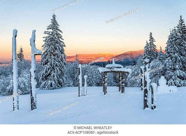 Playground of the Gods, Japanese Ainu totems, Burnaby Mountain Park, Burnaby, British Columbia, Canada