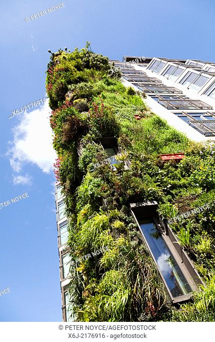 The living wall on the Athenaeum Hotel Piccadilly, London