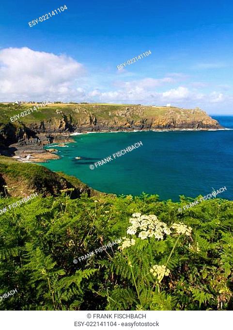 Coastline at The Lizard, Cornwall, England