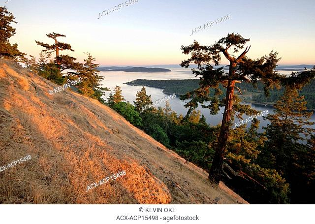 Mount Norman is the highest point on the Penders—its viewpoint offers a panoramic scene of the surrounding islands. You will pass Garry oak, arbutus