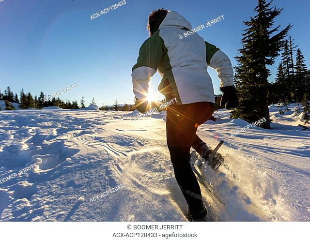 The setting sun highlights a snowshoer running in dry powdery snow near Mt. Washington. The Comox Valley, Vancouver Island, British Columbia, Canada