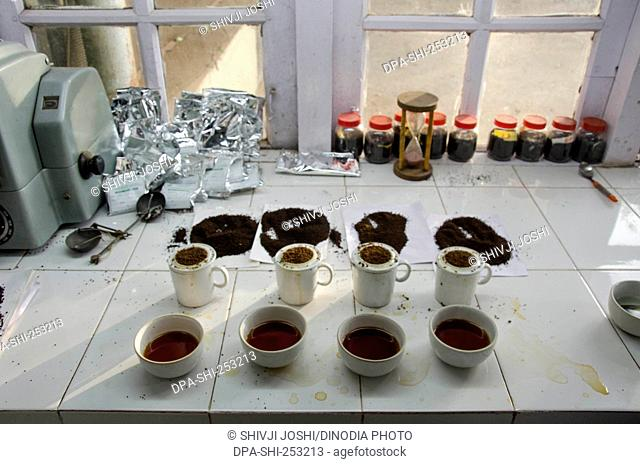 Tea samples, vagamon, kerala, india, asia