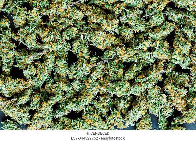 cannabis textures background marijuana weed