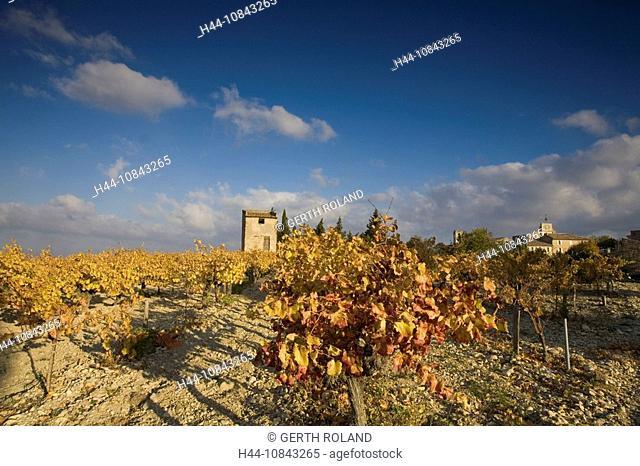 France, Europe, Provence, Buisson, House, Autumn, Departement Vaucluse, Landscape, scenery, Vineyard, Wine region, Agr