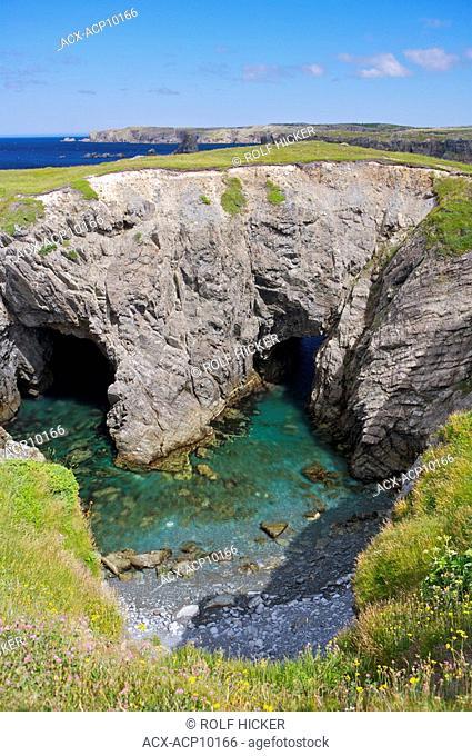 Arches and sea caves in Dungeon Provincial Park, Cape Bonavista, Bonavista Peninsula, Discovery Trail, Bonavista Bay, Newfoundland & Labrador, Canada