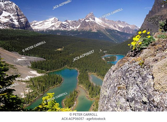 View of Mary Lake and mountain peaks surrounding Lake O'Hara area of Yoho National Park, British Columbia, Canada