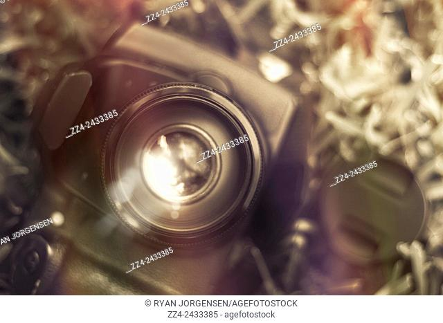 Vintage filtered photo with shallow DOF on a DSLR camera. Photographic lens reflections