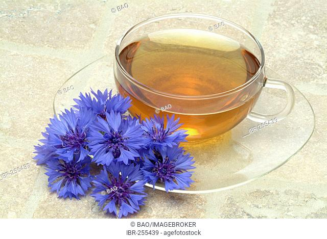 Herb tea made of Cornflower, centaura cyanus