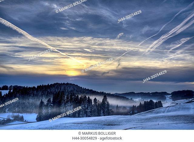 Affoltern i. E., to Affoltern, scenery, Emmental, wood, Abendglühen, spruce forest, winter, sky, condensation trail