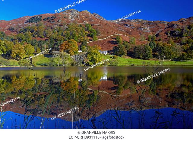 England, Cumbria, Loughrigg Tarn. Surrounding hills reflected in the still water of Loughrigg Tarn in the Lake District National Park