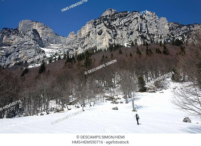 France, Isere, petites roches plateau, marcieu pass, snowshoes hiking at Marcieu alpette 1450m