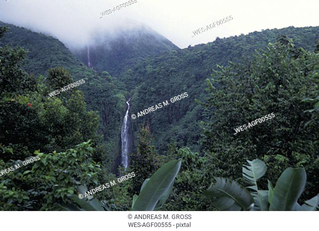 Guadeloupe,waterfall, National Park