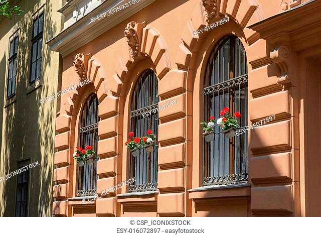 Ornate wrought iron window shutters with germanium plants and te