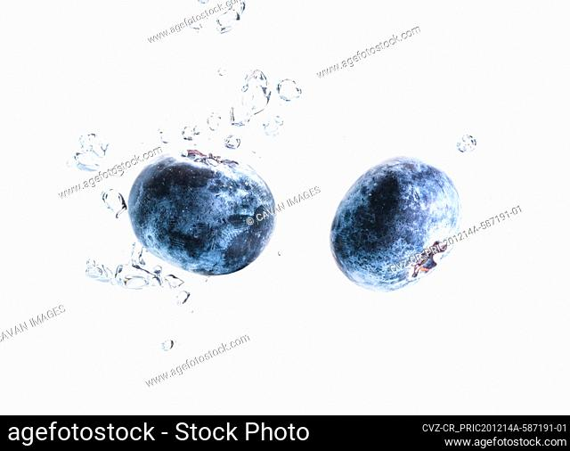 Two organic Blueberry sinking into water with air bubbles white background. Macro detailed closeup