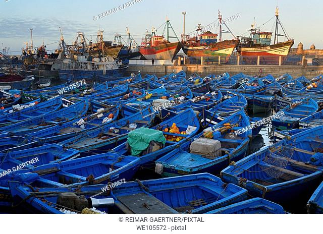 Sea of blue boats at sunrise in the marine port of Essaouira Morocco