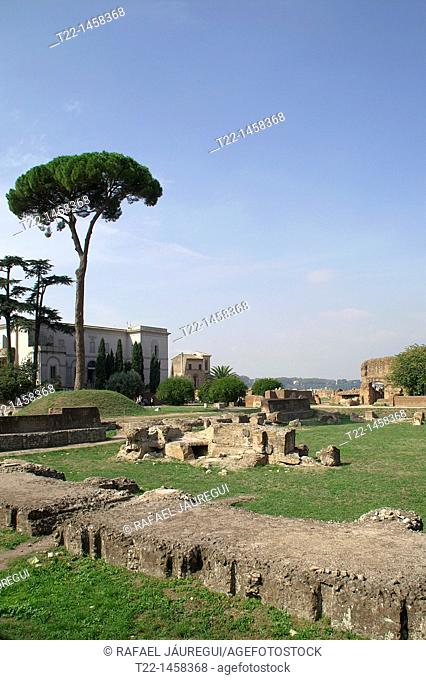 Rome Italy  Architectural remains in the Palatine Forum of Rome