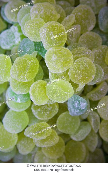 Spain, Aragon Region, Zaragoza Province, Zaragoza, jellied candy