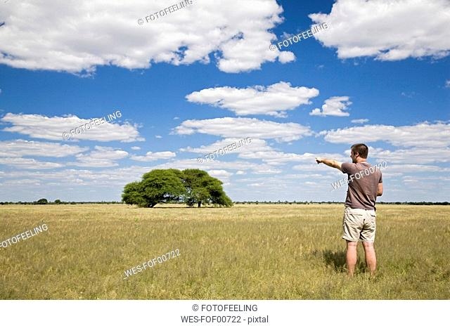 Africa, Botswana, Tourist looking at the landscape