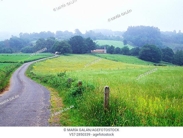 Landscape. Pontevedra province. Galicia. Spain