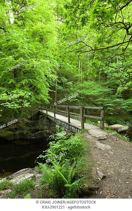Ash Bridge over the East Lyn River in Barton Wood in Exmoor National Park near Watersmeet, Lynmouth, Devon, England