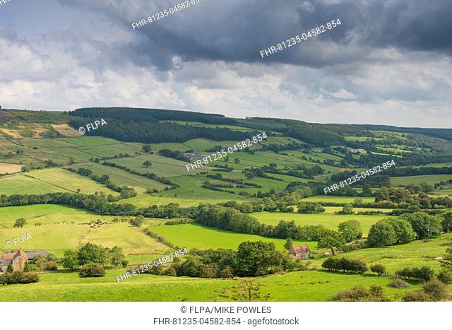 View of farmland with pastures and hedgerows, Farndale Valley, North York Moors N.P., North Yorkshire, England, August