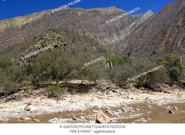 The natural reserve Quebrada de las Conchas, Valles Calchaquíes, Salta, Northwest, Argentina. Located 90 km southwest of the city of Salta