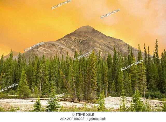 A forest fire in Kootenay National Park, BC