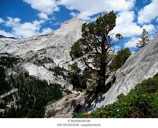 Le Conte Canyon is located in the Sierra Nevada Mountains of California