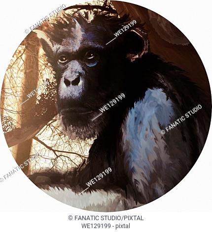Illustration of monkey in forest against white background