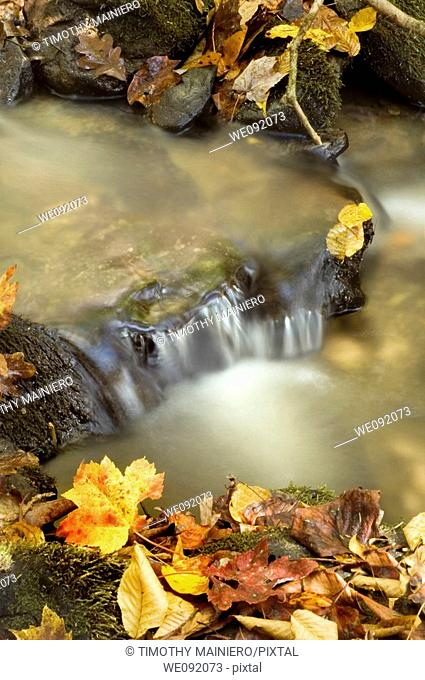 Autumn Waterfall, Great Smoky Mountains National Park