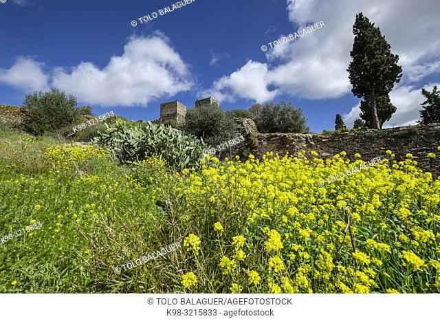 Castelo de Monsaraz, Monumento Nacional, Monsaraz, Distrito de Évora, Alentejo, Portugal