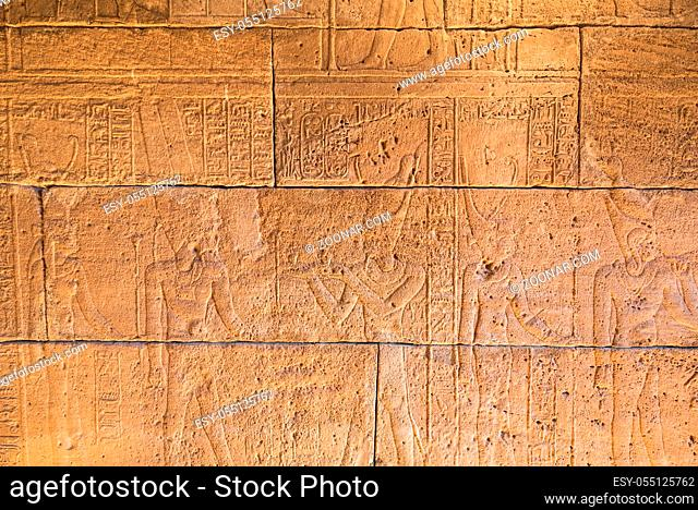 Real Hieroglyphic carvings on the walls of an ancient egyptian temple