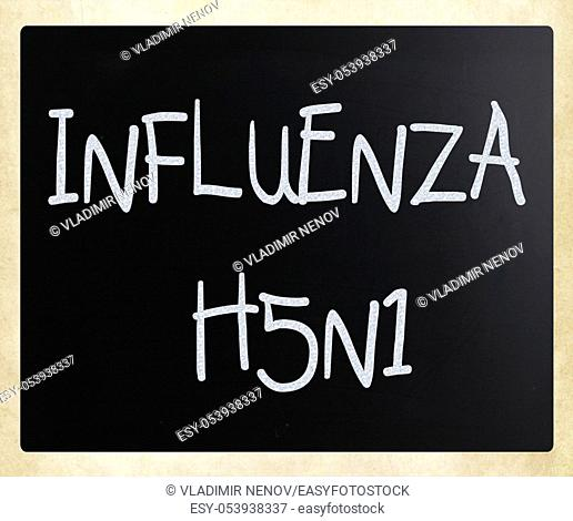Images of the H5N1 Influenza Virus