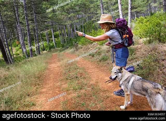 Hiker mature young woman with a hat and a dog in a path. Frias town, Burgos, Castile and Leon, Spain
