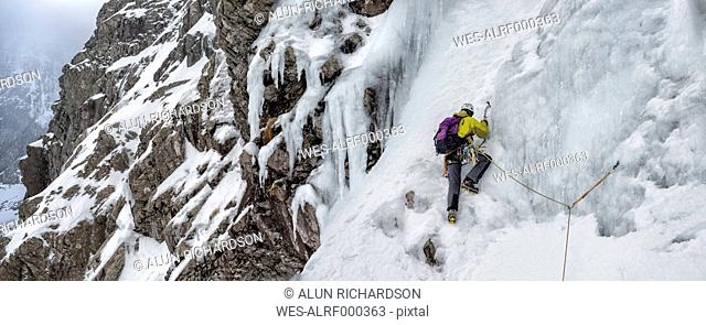 United Kingdom, Scotland, Ben Nevis, ice climbing