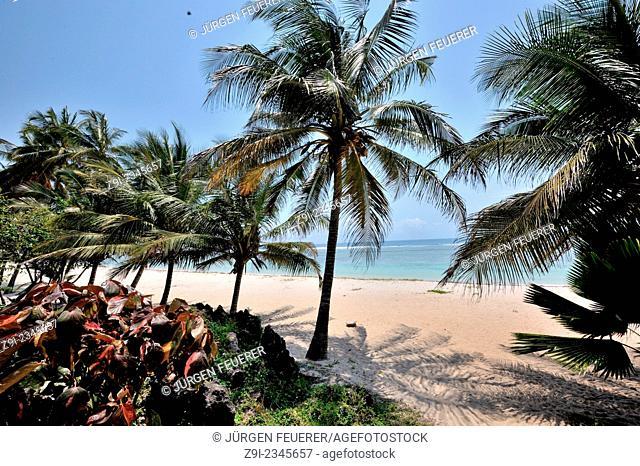 Dreamful palm-fringed beach, Ukunda, Tiwi, Diani Beach, Kenya