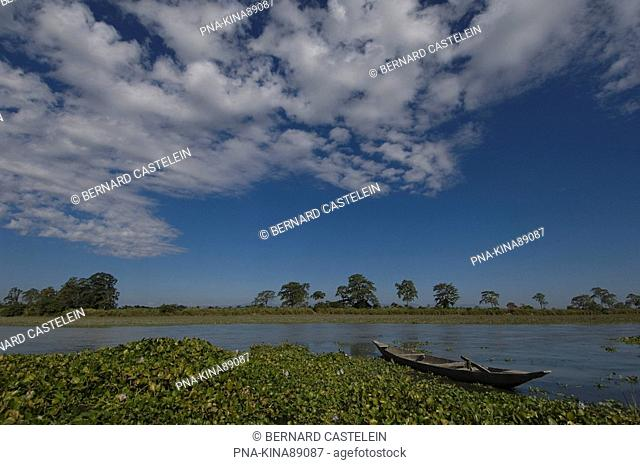 Kaziranga National Park, Assam, India, Asia