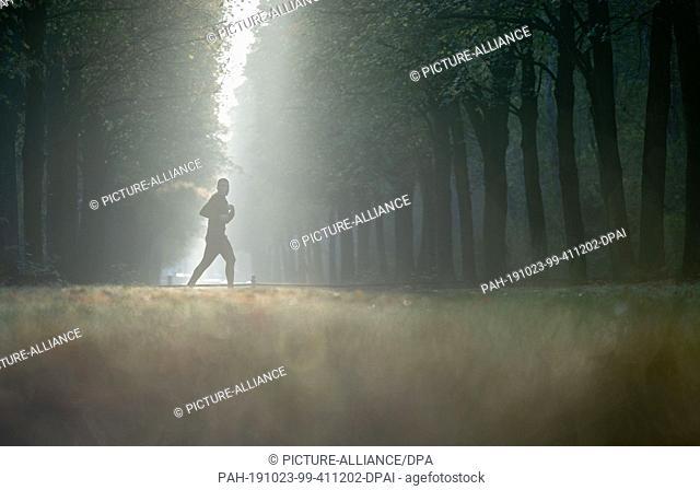 23 October 2019, Berlin: A jogger walks in the morning mist through the Berlin Tiergarten. Photo: Kay Nietfeld/dpa. - Berlin/Berlin/Germany