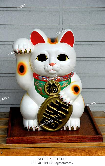 Japanese Calico Cat, Maneki Neko, Kyoto, Japan
