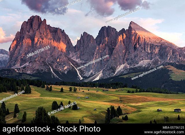 Alpe de Siusi, Alpe di Siusi, Alps, Dolomites, South Tyrol, Italy, Europe