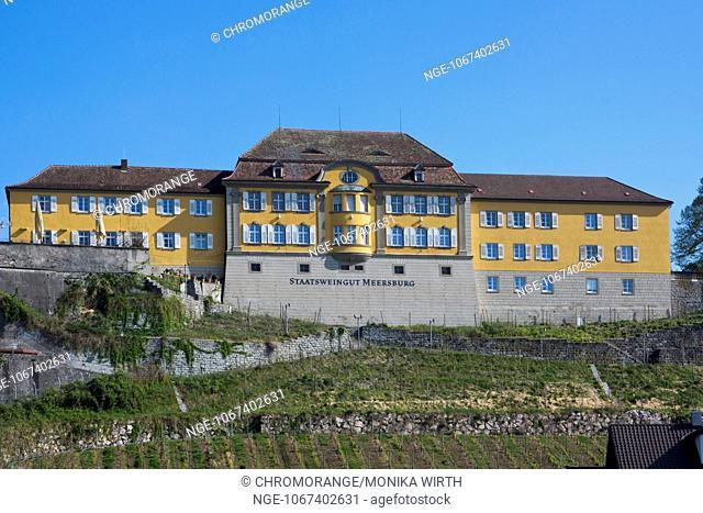 Staatsweingut, State Vineyards, Meersburg, Lake Constance, Baden-Wuerttemberg, Germany, Europe