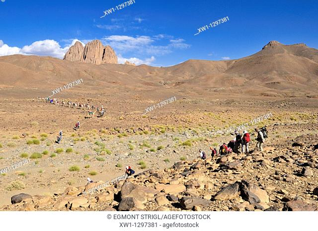 group of tourists hiking through volcanic landscape, Hoggar, Ahaggar Mountains, Wilaya Tamanrasset, Algeria, Sahara, North Africa